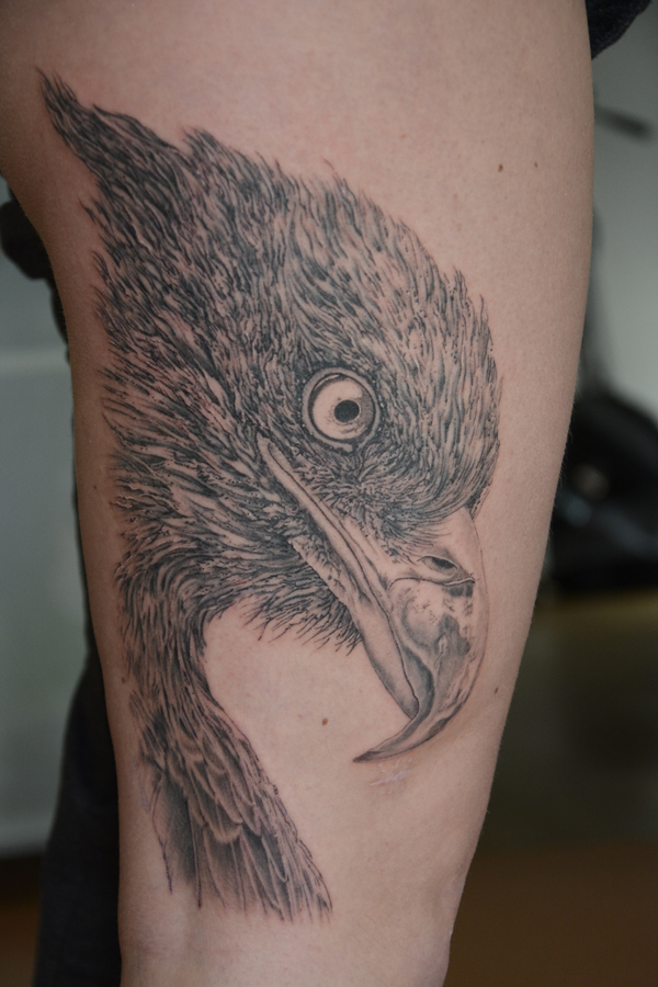Silvano Braga Tattoo Gallery Blackandwhite Eagle 02